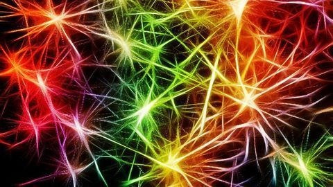 Holistic Bursting Cells Could Be Basis of Brain Cognition