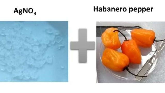 How Can You Make Silver With a Habanero?