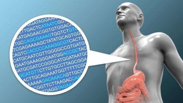 Predicting the Risk of Developing Esophageal Cancer Using Genomic Data