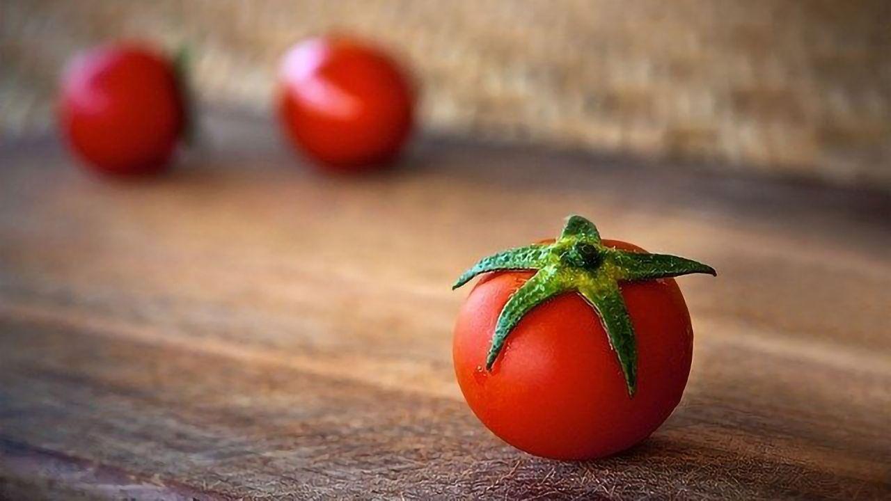 Preharvest Treatment Improves Tomato Food Safety
