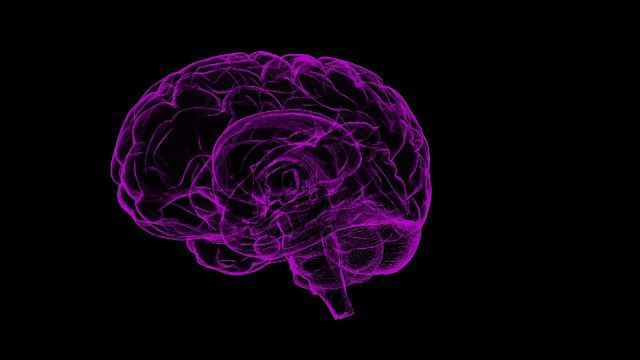 Investigational Drug Stops Toxic Proteins Tied to Neurodegenerative Diseases