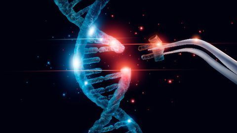 The Power of CRISPR Cas9 Comes With Great Responsibility