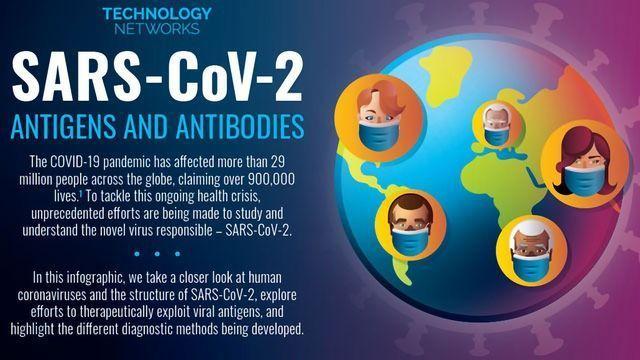 SARS-CoV-2 Antigens and Antibodies