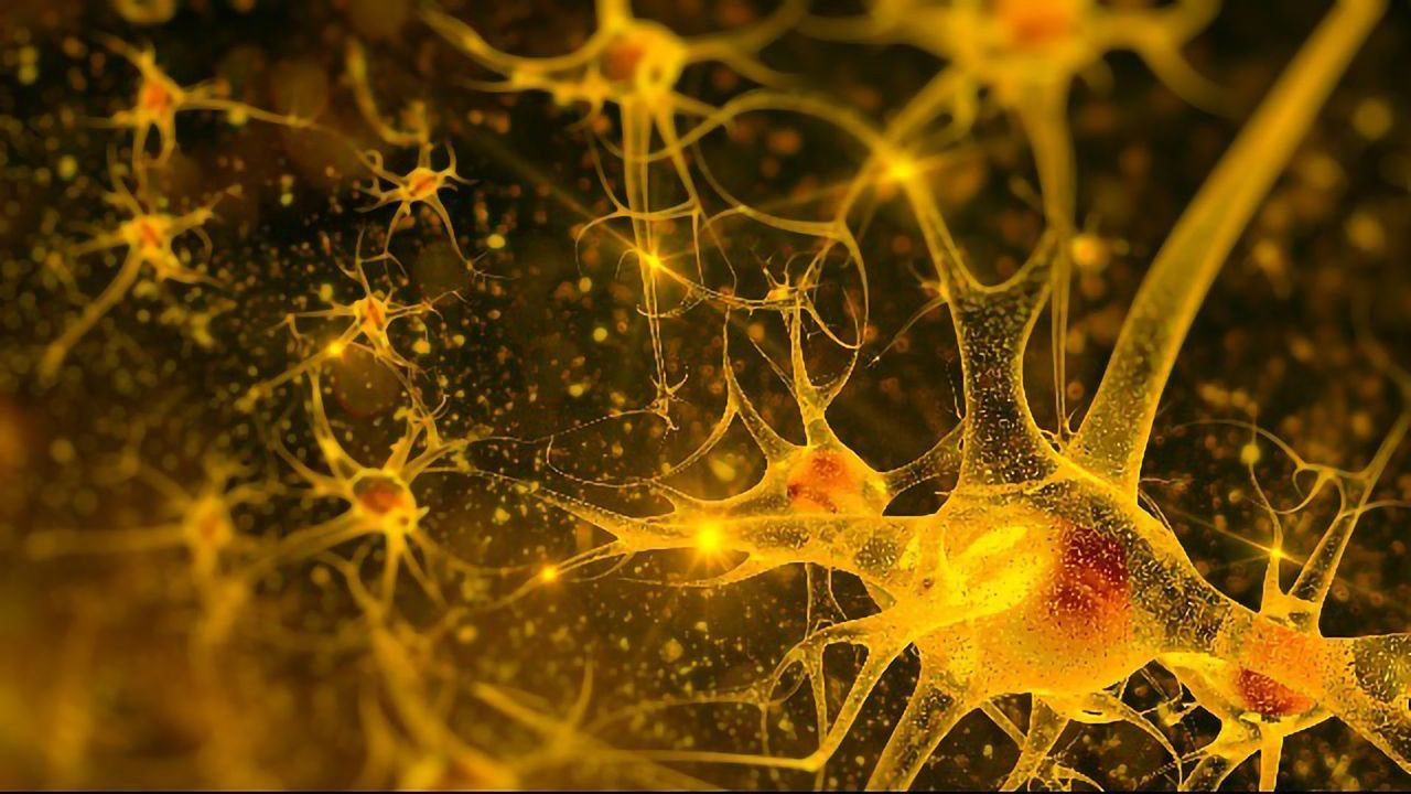 Smart Drug Delivery Tech May Help Treat Neurological Disorders