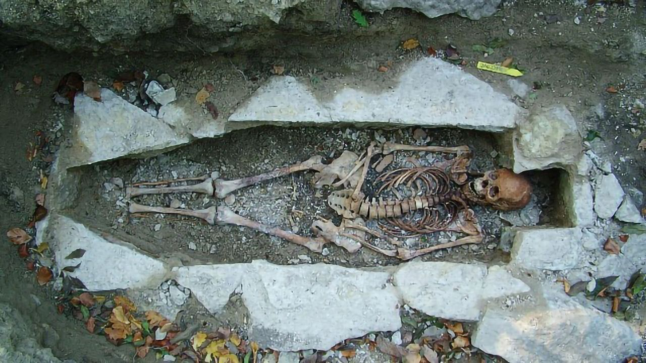 """Largest Ever DNA Sequencing of Viking Skeletons """"Rewrites"""" History"""