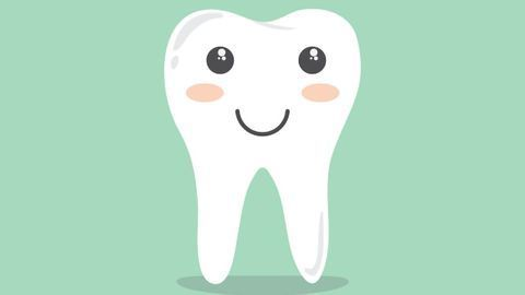 Dental Cell Type Atlas Produced