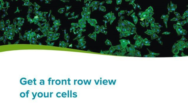 Get a Front Row View of Your Cells