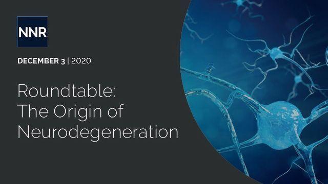 Roundtable: The Origin of Neurodegeneration