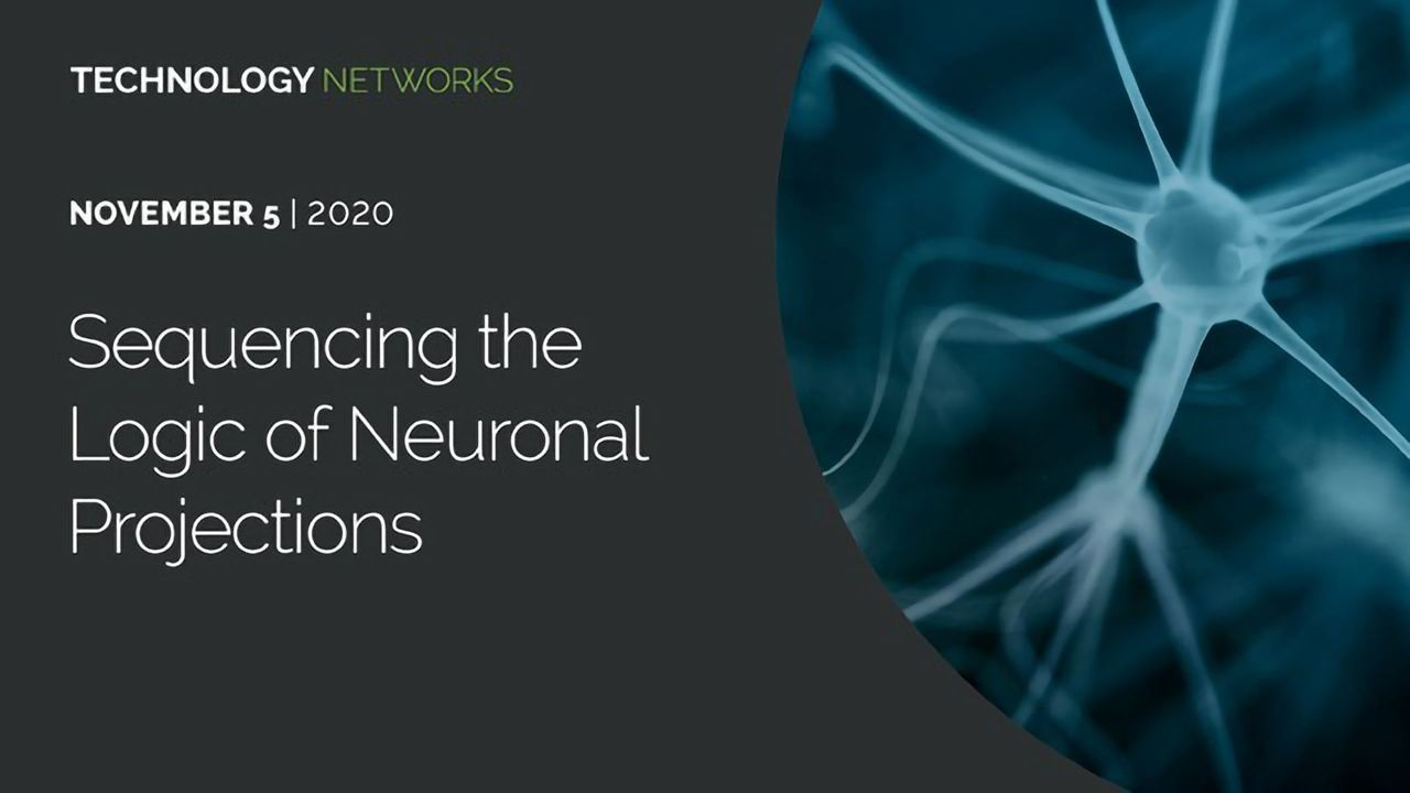 Sequencing the Logic of Neuronal Projections