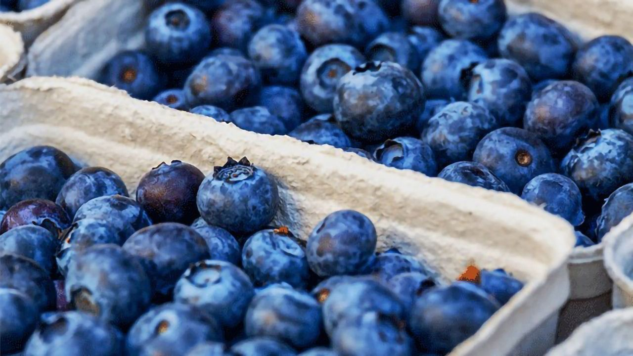 Compound Found in Blueberries Could Help To Treat Inflammatory Diseases