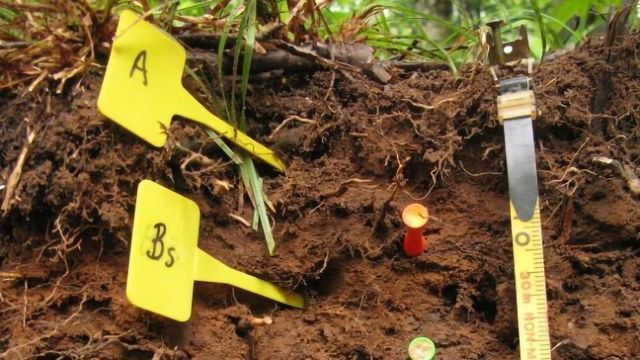 Soil Analysis Technique Could Aid Climate Change Predictions