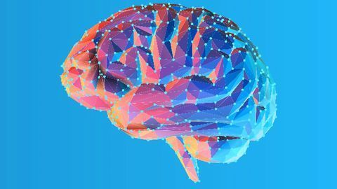 160 Genes Linked to Brain Shrinkage in 45,000-Person Study
