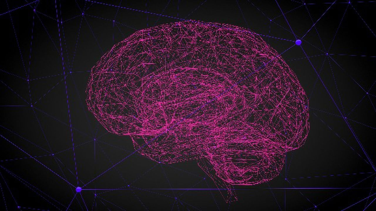 Stem Cells Repair Parkinson's-Affected Circuits in Mice