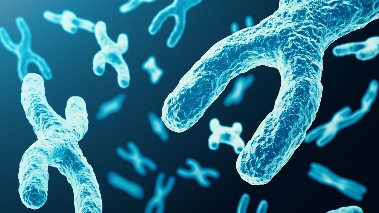 Scientists Develop Web App for Comparing Genomes