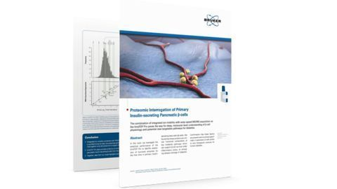 Proteomic Interrogation of Primary Insulin-Secreting Pancreatic β-cells