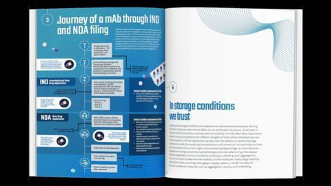 Your Guide To Developing Antibody-Based Therapeutics Efficiently