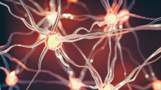Simple Sugar Promotes Myelin Repair in Mouse Models of Multiple Sclerosis