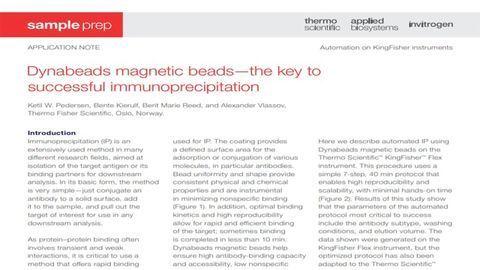 Achieve Successful Immunoprecipitation With Dynabeads