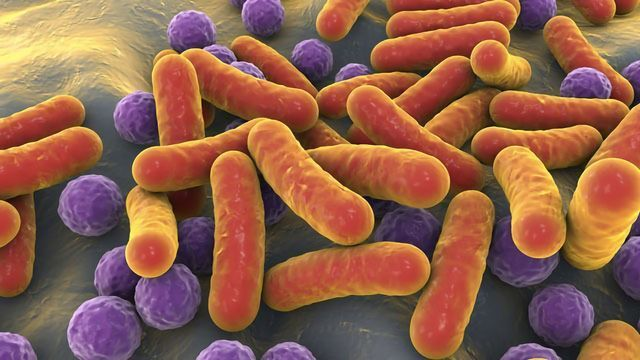 Six Steps Towards Understanding the Microbiome and Cancer