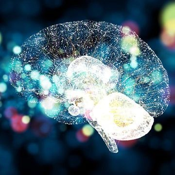 """Genes That """"Jump"""" May Rewire Neuronal Function in the Brain"""