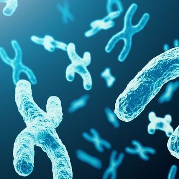 Major Step Toward Angelman Syndrome Gene Therapy