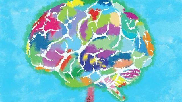 Happiness and the Evolution of the Human Neocortex