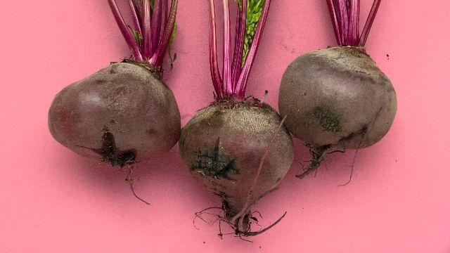 Peptide Found in Beetroot a Potential Drug Candidate for Neurodegenerative Diseases