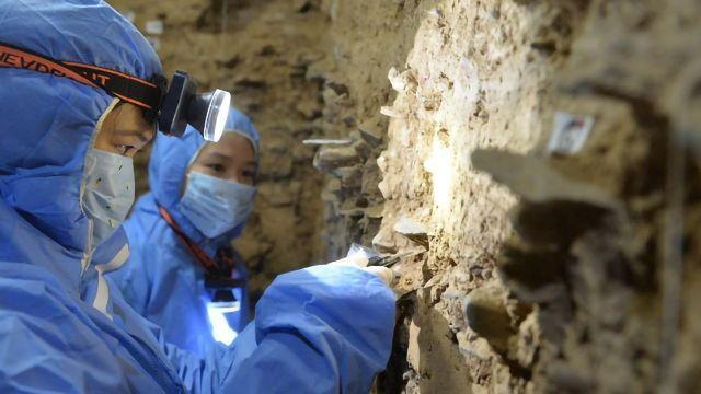 Denisovan DNA Found in Sediments of Baishiya Karst Cave