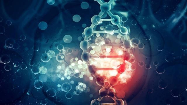 Cancer genetic news, Department of Molecular Virology - Cancer genetic news