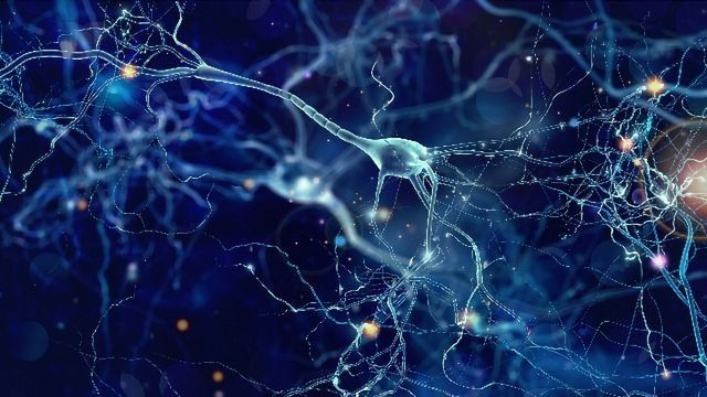"""Star-Shaped Protein Once Thought """"Undruggable"""" Is Target of Alzheimer's Study"""