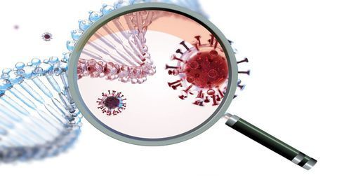 Exploring Genetic Variation and COVID-19 Clinical Variability