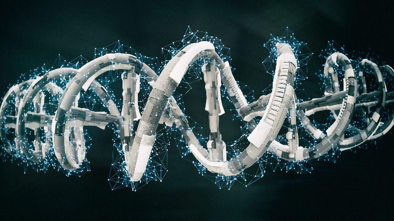 Diet-Induced Hepatocyte Regeneration Enhances CRISPR-Mediated Gene Repair