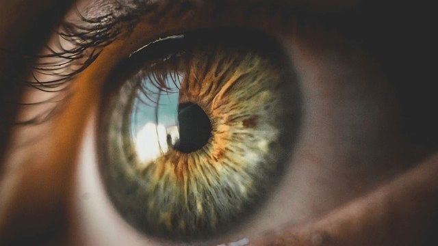 Newly-Identified Group of Neurons Could Offer Target for Strabismus Therapies