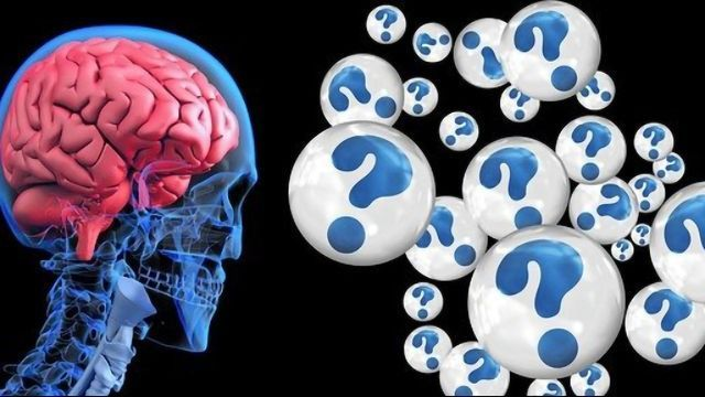 Link Between Gut Microbiome and Alzheimer's Confirmed