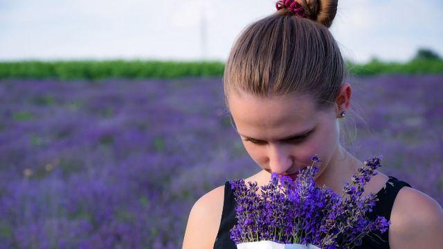 Order, Odor: Proposing a Framework for Smell