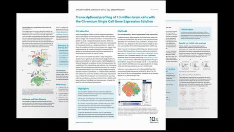 Using Single-Cell Gene Expression for Transcriptional Profiling of Brain Cells