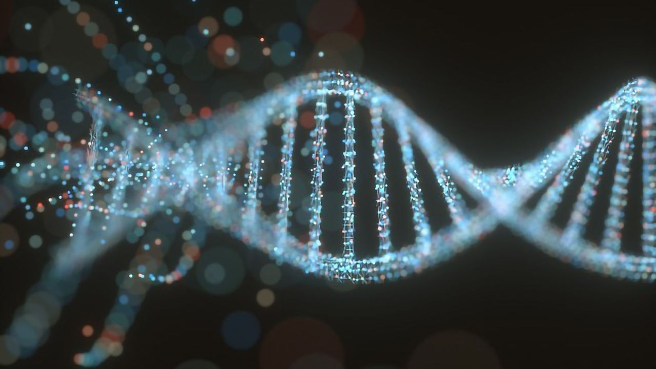 Folding of SARS-CoV2 Genome Reveals Drug Targets