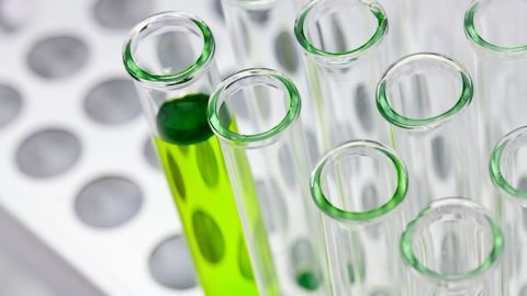 Creating a Strategy for a Successful Assay