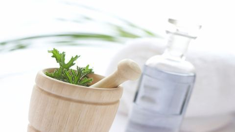 Using Plants To Synthesize Medicinal Compounds
