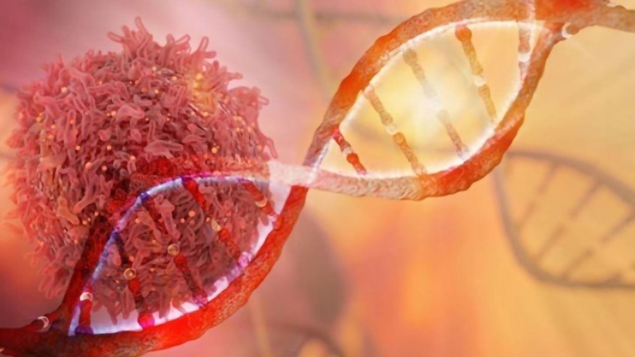Porvair Reports Ovarian Cancer Project Shows Promise