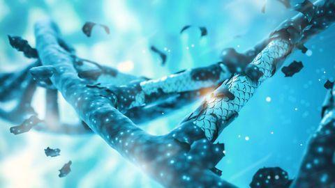 How the CRISPR Immune System Evolved