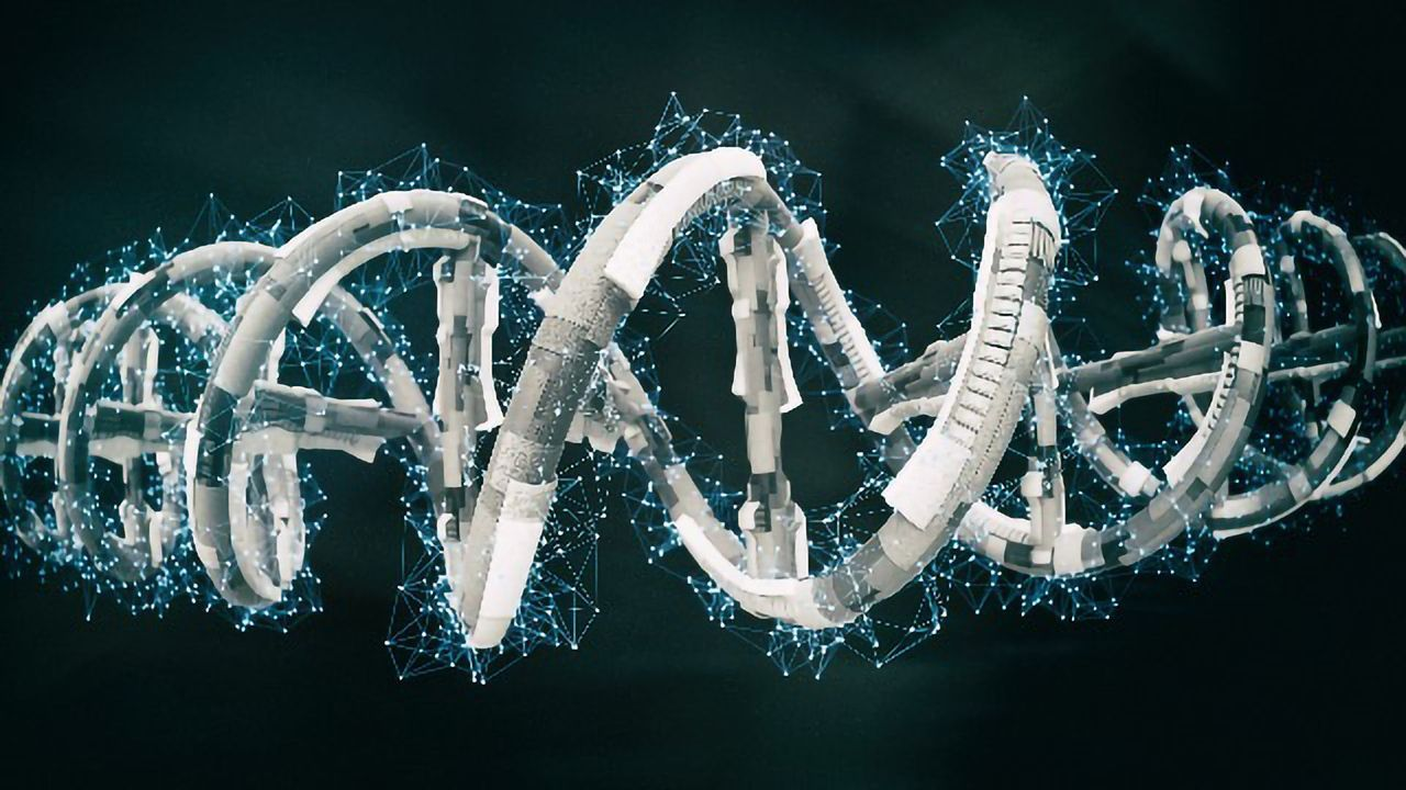 How the Rho Protein Really Stops Gene Expression