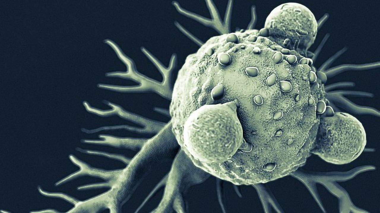 """""""Molecular Clock"""" Blood Test Could Be Used To Track Metastatic Breast Cancer"""