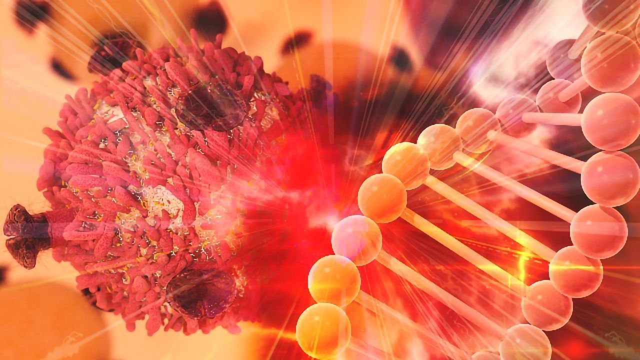 Exploring the Role of <i>Zmat3</i> in Lymphoma and Lung Cancer Development