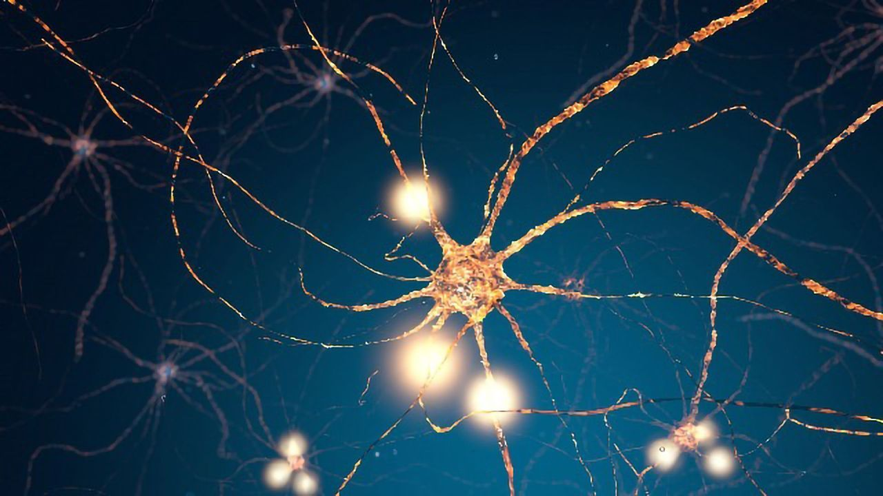 """Brain's """"Speedometer"""" Could Solve Part of Dementia Puzzle"""