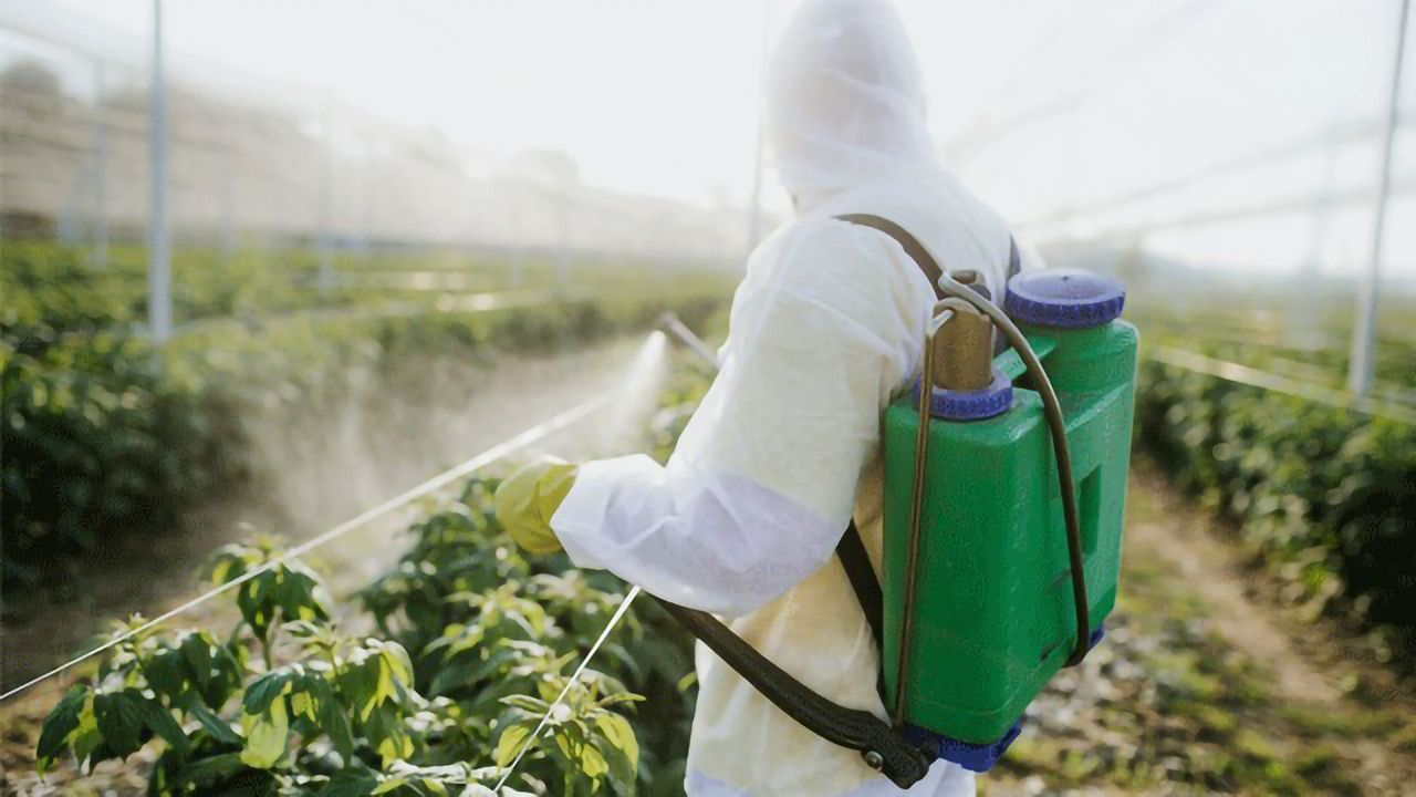 Sniffing Out New Methods for In-Field Pesticide Detection