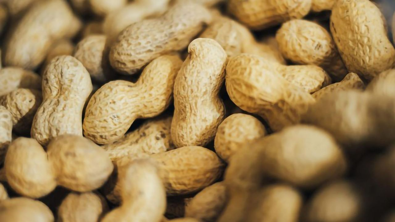 Peanut Allergy Treatment Shown To Significantly Reduce Risk of Life-Threatening Reactions