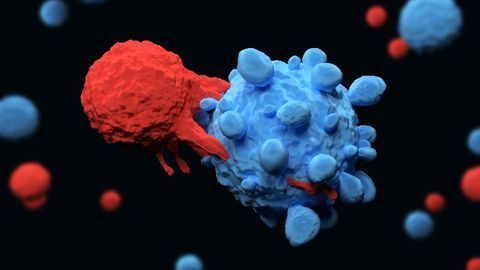 CAR T-Cell Therapy Is Highly Effective in Trial Participants With Non-Hodgkin Lymphoma