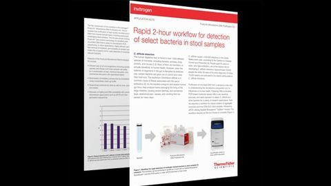Rapid Workflow for Detection of Select Bacteria in Samples