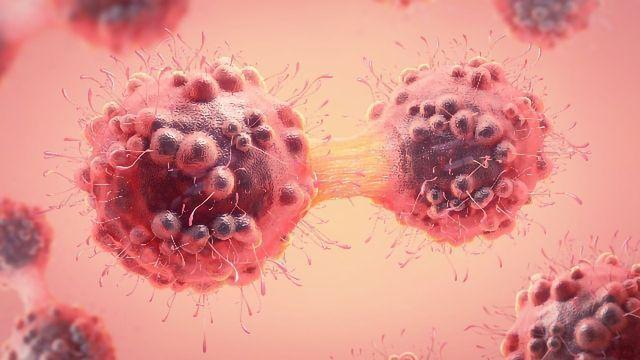 Targeting Senescent Cells To Improve Cervical Cancer Survival